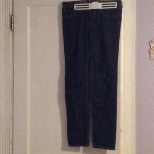 AG Adriana Goldschmied the Stilt Jeans